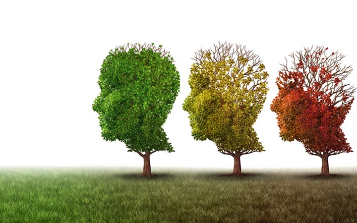 Three trees pruned in the shape of human heads, each with diminishing foliage, with colour changing from green through yellow to red