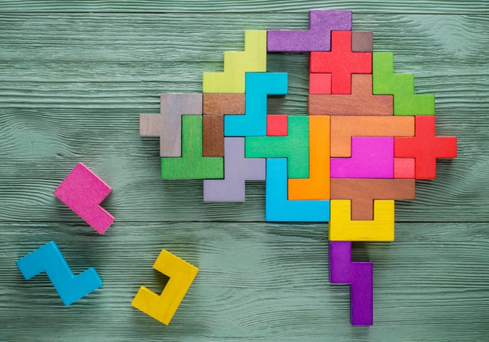 Human brain is made of multi-colored wooden blocks