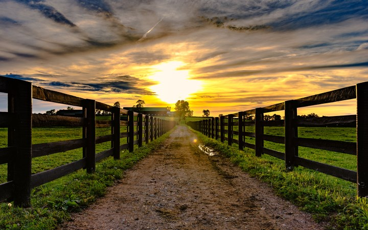 Dirt road leading to a barn with sunset
