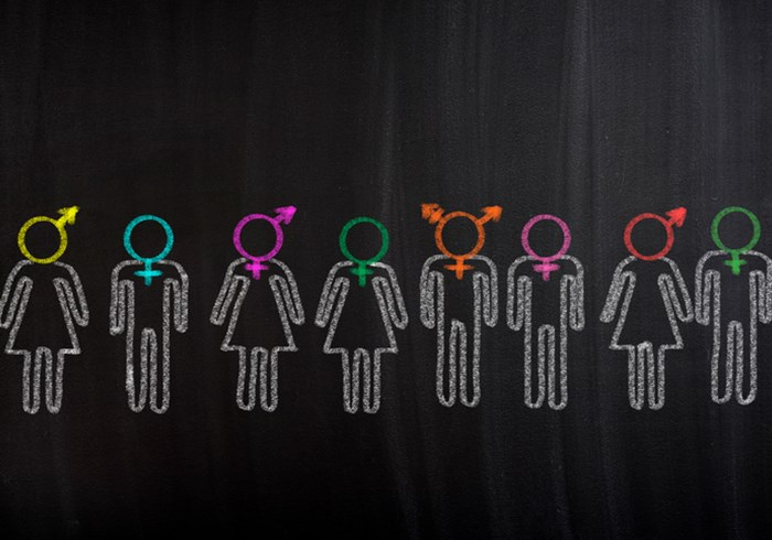 Blackboard drawings of male and female figures with diverse gender signs in different colours as their heads