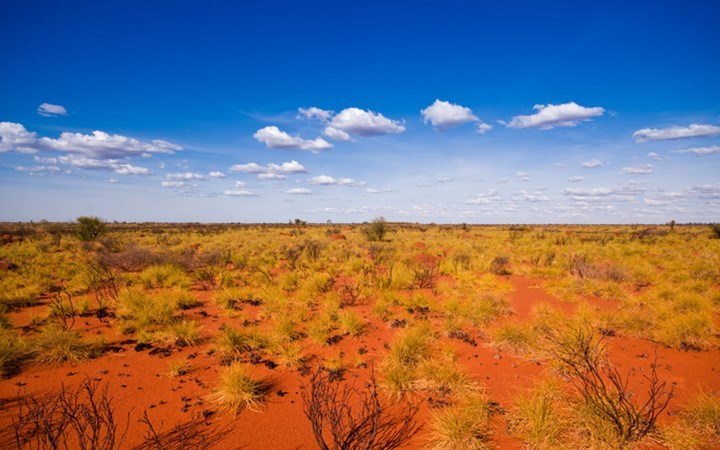 Outback landscape showing the blue sky and orange sands