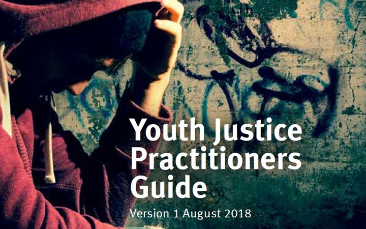 Youth Justice Practitioners Guide