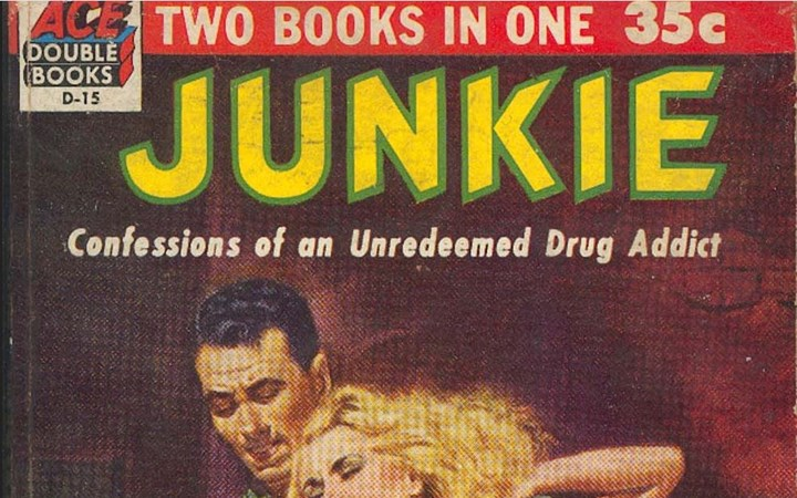 Junkie Book cover